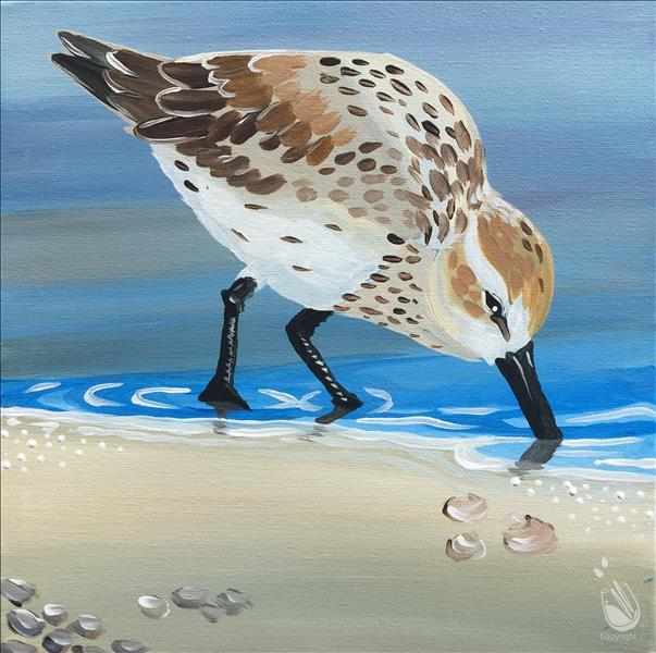 Coastal Friends - Sandpiper