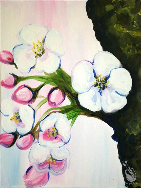 Cherry Blossoms in Bloom - In Studio