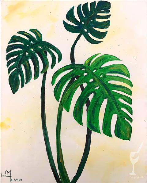 Happy Monstera
