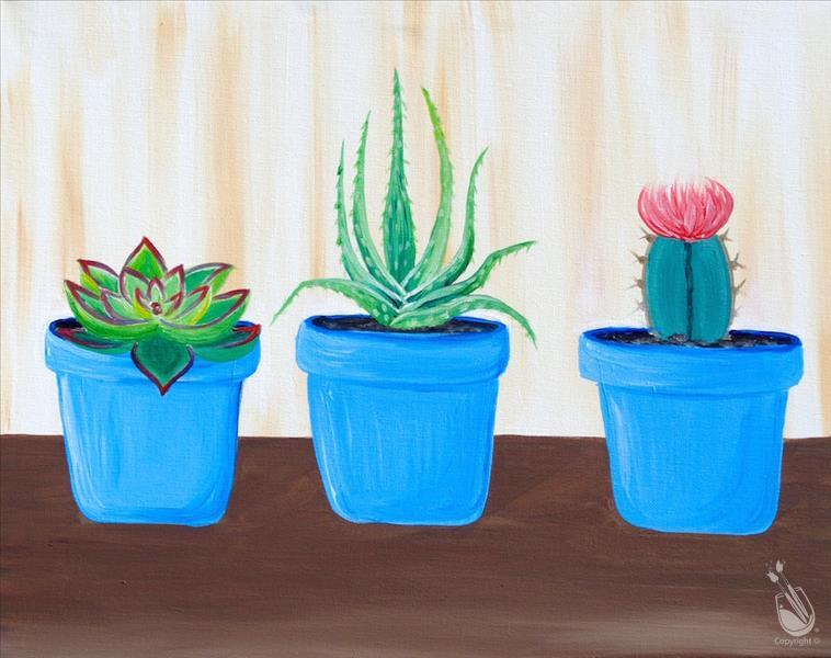 The Succulent Series (Ages 12+)