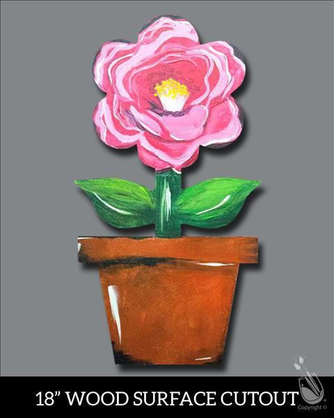 Manic Monday, $10 Discount - Camelia In a Pot